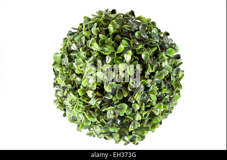 Picture of a plastic round plant decoration - Stock Image