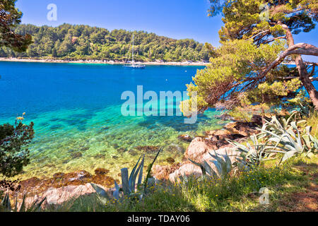Idyllic turquoise stone beach in Cavtat, Adriatic sea, Dalmatia region of Croatia - Stock Image