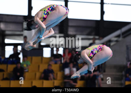 Tatsumi International Swimming Center, Tokyo, Japan. 19th Apr, 2019. Rin Kaneto & Mai Yasuda, APRIL 19, 2019 - Diving : Japan Indoor Diving Championship 2019 Women's Synchronised 3m Springboard Final at Tatsumi International Swimming Center, Tokyo, Japan. Credit: MATSUO.K/AFLO SPORT/Alamy Live News - Stock Image