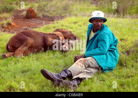 KEEPER RELAXES WITH BABY ELEPHANT AT SHELDRICK ELEPHANT ORPHANAGE NAIROBI KENYA - Stock Image