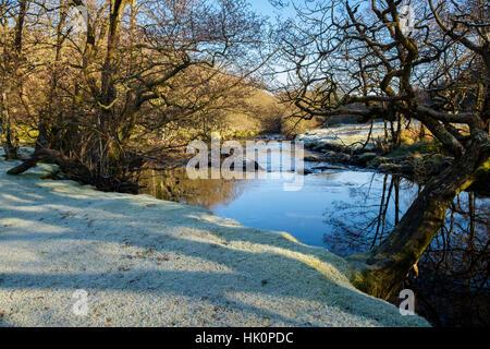 Frosty scene on Afon Llugwy River riverbank near Betws-y-Coed, Conwy, North Wales, UK, Britain - Stock Image