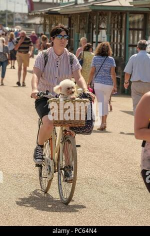 Weston-S-Mare, Somerset, UK. 31st July 2018. The sunshine returns to South West England  with the weather forecast the improve as we head  into the weekend . This cyclist enjoys a ride along a promenade busy with tourists at Weston-S-Mare, Somerset, U.K. Credit: Stephen Hyde/Alamy Live News - Stock Image