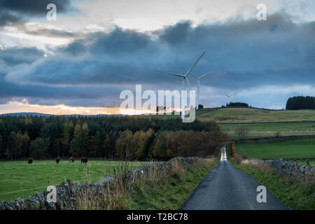 Wind turbine power in Scotland - Wooplaw wind farm in the Scottish Borders - Stock Image