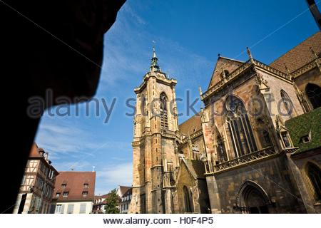 BLWX108347 [ (c) blickwinkel/McPHOTOx/PhotoPoster Tel. +49 (0)2302-2793220, E-mail: info@blickwinkel.de, Internet: - Stock Image