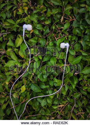 white earphone isolated on natural green plants - Stock Image