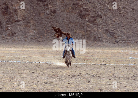 A Kazakh eagle hunter calls his eagle during the 2017 golden eagle festival competition in Olgii, western Mongolia. - Stock Image