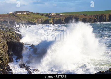 Sandy Cove, Castlehaven, West Cork, Ireland, December 18th 2018. Yet another night of gale force onshore winds drive huge waves up the cliffs towards the coastal properties. Credit: aphperspective/Alamy Live News - Stock Image