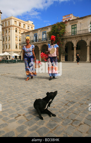 Mulattas in traditional costume and dog, Plaza de la Catedral, Habana Vieja, Cuba. Photo CUBA4645 Copyright Christopher - Stock Image