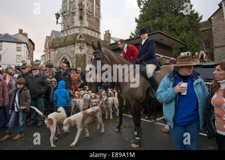 Fox hounds at Hay on Wye hunt meet on Boxing day - Stock Image