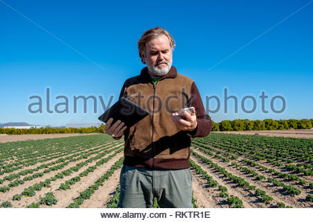 A farmer uses his tablet and his mobile in his field. - Stock Image