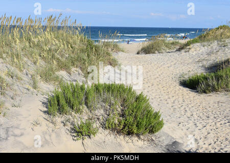 Coquina Beach on the Cape Hatteras National Seashore. - Stock Image
