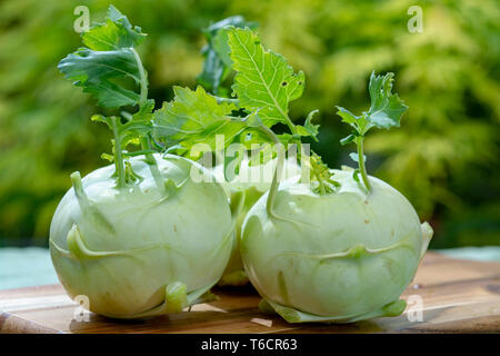 Heads of fresh ripe bio white cabbage kohlrabi from organic farm, close up - Stock Image