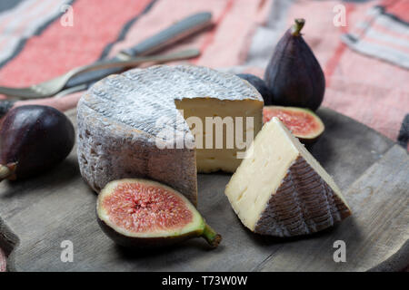 Round mature French Tomme cheese with one cutted piece served with fresh ripe figs close up - Stock Image