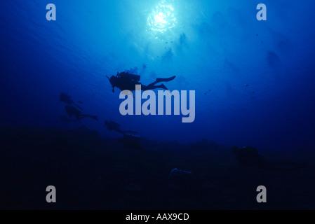 Divers swimming alone edge of dropoff - Stock Image