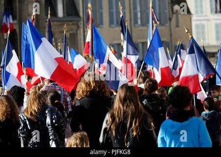 The Seine and Marne. Coulommiers. Commemorative ceremonies of November 11th, 2014. Crowd in front of the French flags. - Stock Image
