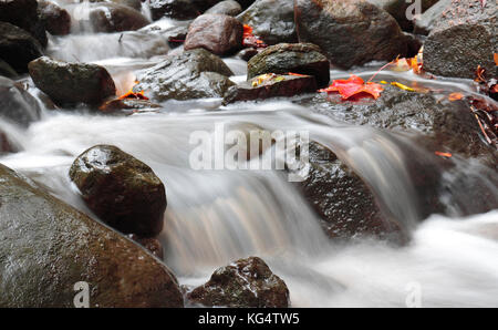 Water running through rocks in Moore Park Ravine Toronto - Stock Image