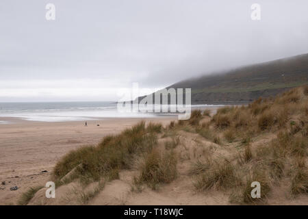 21 March 2019, Saunton, North Devon, UK - A man walks his dog in Saunton Sands beach - Stock Image