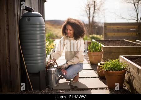 Mid adult woman filling watering can from water butt - Stock Image