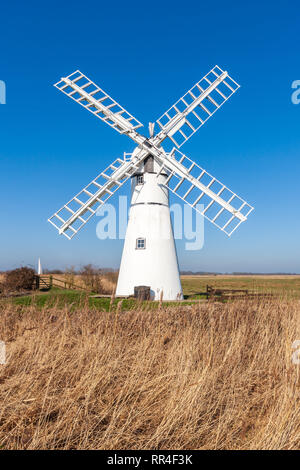 thurne mill, windmill in nofolk on thr norfolk broads spring uk - Stock Image
