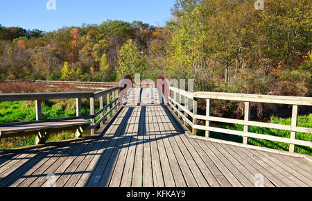 Boardwalk hiking trail through forest and marshlands in Royal Botanical Gardens in Burlington and Hamilton, Ontario, - Stock Image