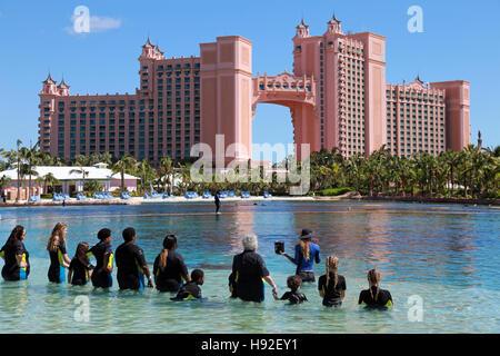 Dolphin Cay at Atlantis resort, Paradise Island, Bahamas - Stock Image