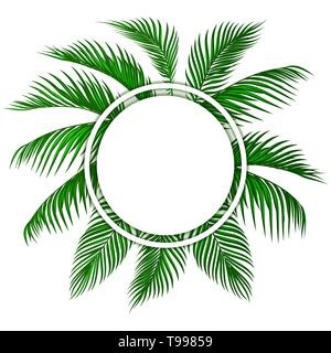 Green tropical palm leaves. Place for advertising, announcements. illustration - Stock Image