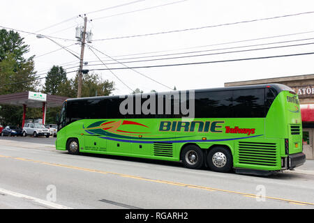 A bright green Birnie Trailways charter tour bus parked in Speculator, NY USA - Stock Image