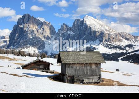 Dolomites Alps. Seiser Alm, Alpe di Siusi, Italy - Stock Image