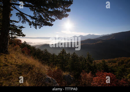 Scenic view of landscape against sky on sunny day - Stock Image