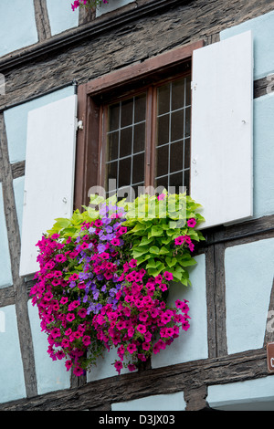 Historic old house in town of Riquewihr voges, France. - Stock Image