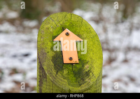 Signs mounted on a moss-covered wooden post indicating footpath for walkers Arrowe Park Birkenhead February 2019 - Stock Image