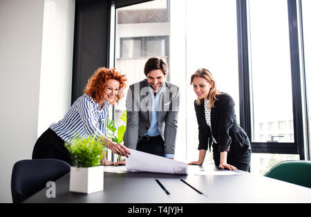 A group of young cheerful business people with documents standing in an office, talking. - Stock Image