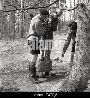 1960s, historical, adventure scout with a team leader in the forest at an outdoor activity course lifting a a stone filled sack tied to a tree branch, England, UK. - Stock Image