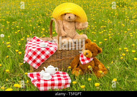 Teddy Bear's Picnic in lush green meadow with yellow flowers.  Traditional wicker basket and red gingham tablecloth.  Horizontal.  Concept: Childhood - Stock Image