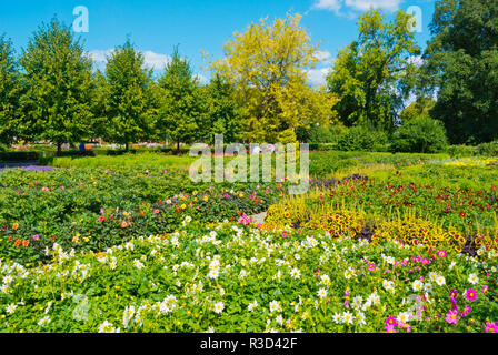 Flowers, botanical garden, Gorky Park, Moscow, Russia - Stock Image
