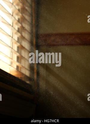 Dust in sunbeam through home window - Stock Image