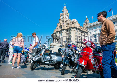 Mods and scooters at the Pier Head on the banks of the River Mersey, people gather in front of a load of mods with scooters in the sunshine in front of the Liver Building, on a sunny Bank Holiday Weekend, Liverpool, England UK Europe - Stock Image