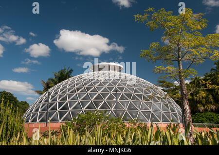 Tropical display dome at the Mt Coot-tha Botanic Gardens, Brisbane, Queensland, Australia - Stock Image