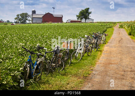 A row of bicycles parked in a farm field near New Holland, Lancaster County, Pennsylvania. Bicycles are used by Old Order Mennonites as transportation - Stock Image