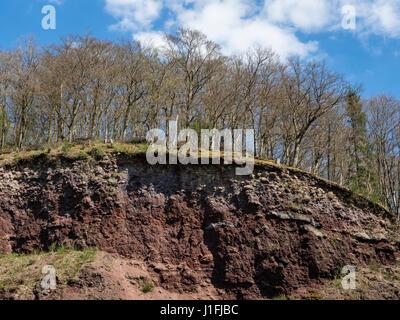 Volcanic crater wall, village Strohn, near Daun, Eifel, Germany - Stock Image