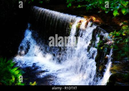 Stock Ghyll Force,Ambleside,Lake District,Cumbria,England,UK - Stock Image
