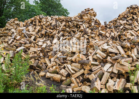Pile of cut and split firewood on a dirt lot in summer, Quebec, Canada - Stock Image
