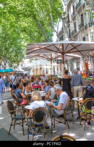 The Passeig d'es Born  in Palma - Stock Image