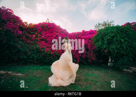 Bride walks among blooming trees and flowers during the honeymoon in Egypt. Back view. - Stock Image