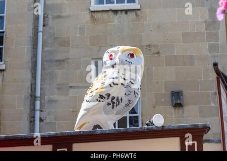 George the owl sponsored by The Owls of Bath trail looks out from the roof of the San Francisco Fudge Factory - Stock Image