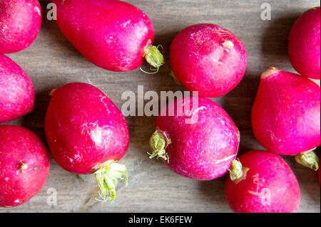 Freshly harvested radishes on a wooden surface - Stock Image