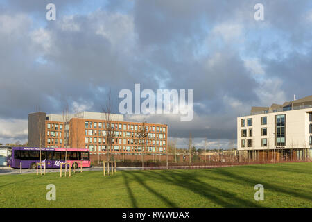A view across Waterside Campus home to the University of Northampton, UK; the Senate building to the right,  Avon Cosmetics to the rear. - Stock Image