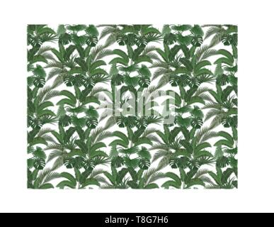 Green tropical leaves of banana, coconut, monstera and ogawa in the pastel colors. Seamless illustration - Stock Image