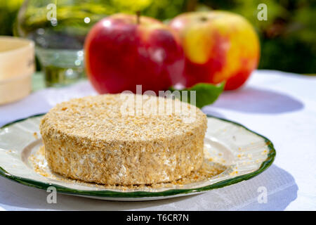 French cheeses collection, piece of fermented cow milk cheese Camembert au Calvados served with apples outside in green garden in sunny day - Stock Image