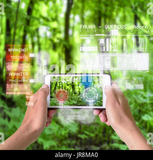 Woman using a smart device with reality augmentation graphical overlays in nature to understand the environment and plants - Stock Image